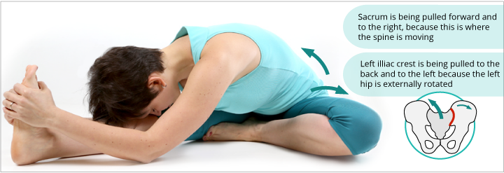 Sacroiliac joint pull in Head-to-Knee Pose (Janu Sirsasana)