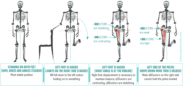 Neglecting your hip abductors can mess up your walk, sleep and balance