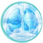 Breath in yoga, lungs