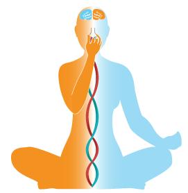 Learn live yoga sites
