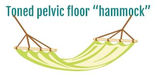 Toned pelvic floor hammock