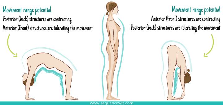 Potential Movement Range