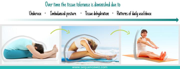 Tissue Tolerance