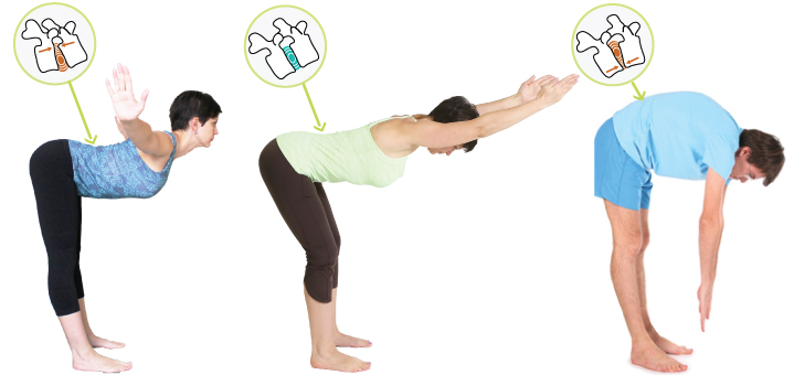 How to bend forward without stressing the spine