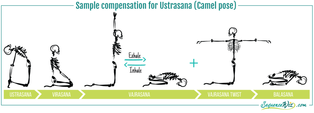 Sample compensation for Camel pose