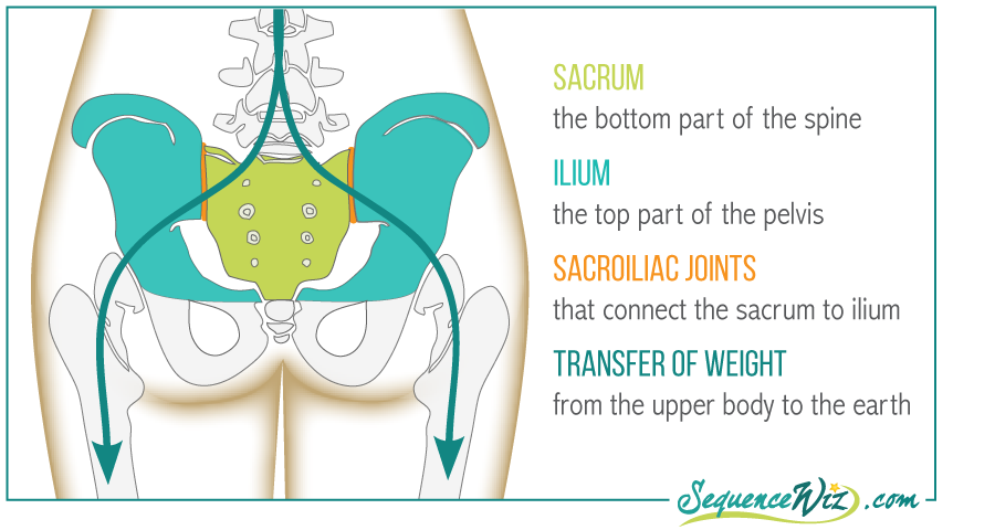 Sacrum Weight Destribution
