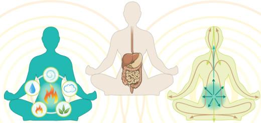 Digestive-system_views