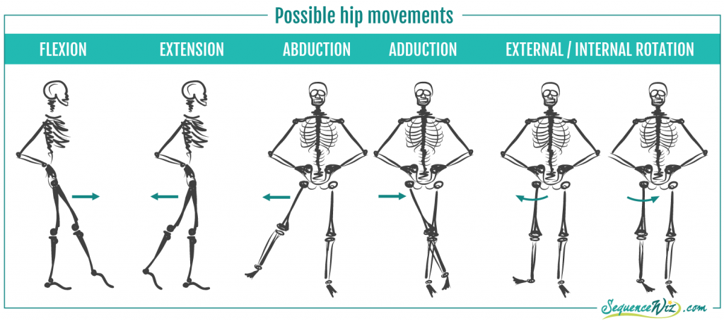 Hip Movements
