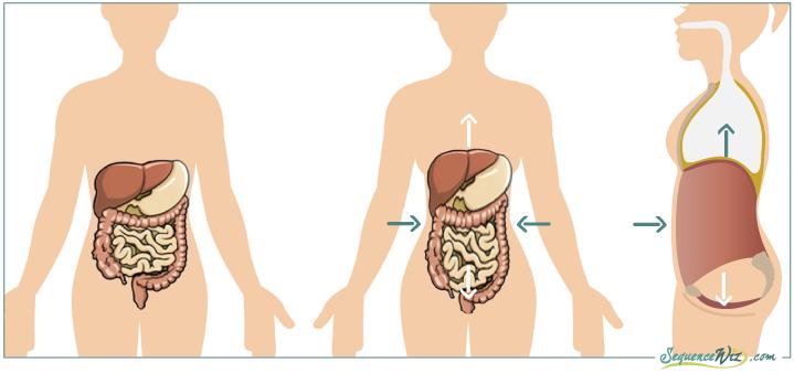Intra-abdominal-pressure