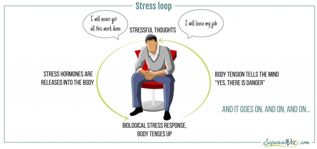 StressLoop