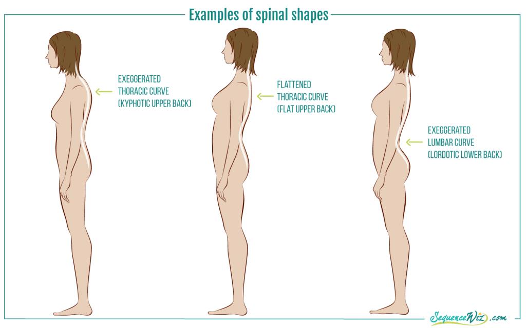 PostureTypes