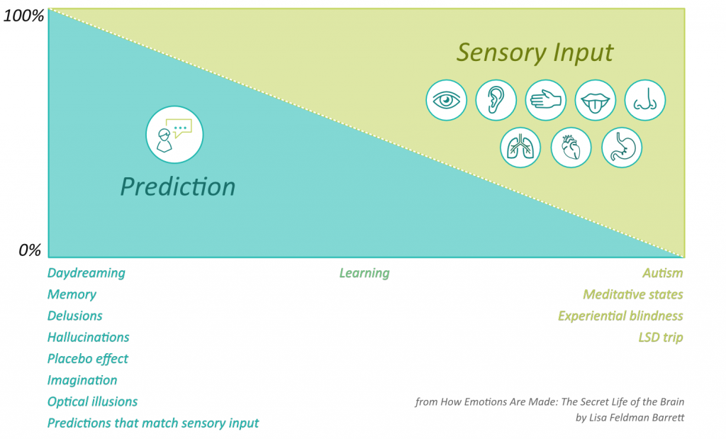 preconceived notions and sensory input